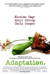 Adaptation.'s cover